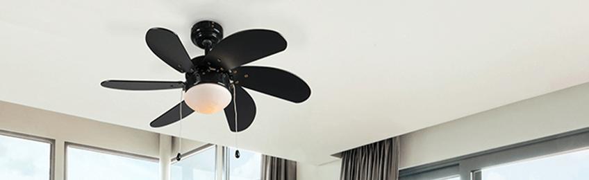 Ventilatori a soffitto nero