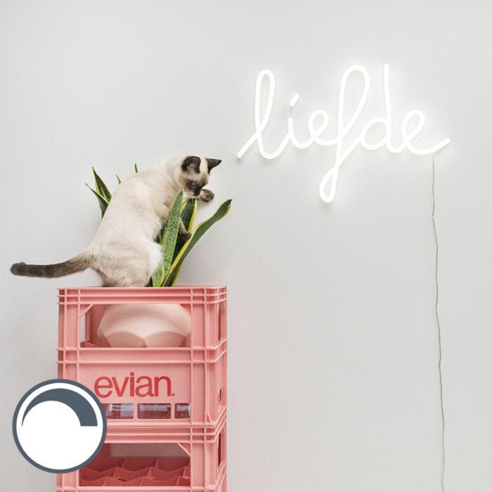 LED-bianco-Lampada-da-parete-con-telecomando-incluso--.-Neon-Amore